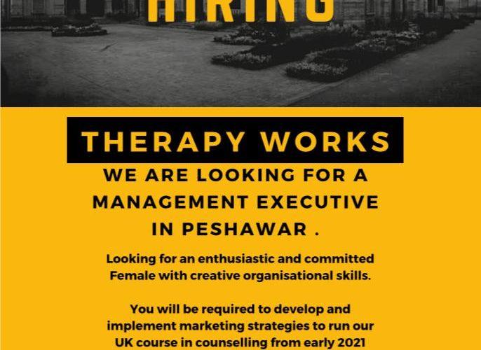 Management Executive Job in Peshawar